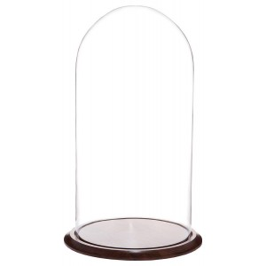 "Plymor Brand 11.75"" x 23"" Glass Display Dome Cloche (Walnut Base) 840003106442  202343770373"