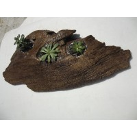Driftwood House Planter for air plants, succulents, cactus - LARGE and SEALED    263606572519