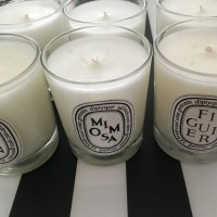 DIPTYQUE Scented Candle 70g Assorted. choose 1. NEW no box  up to 30 hours   232100608272